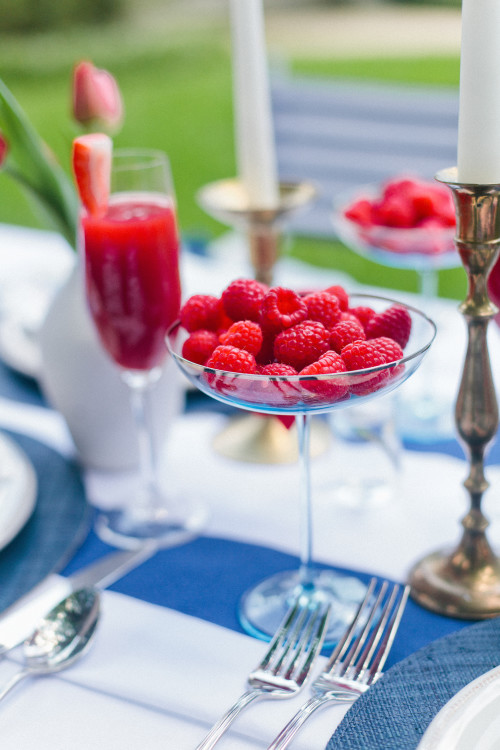 design-darling-fourth-of-july-raspberry-coupes-500x750.jpg