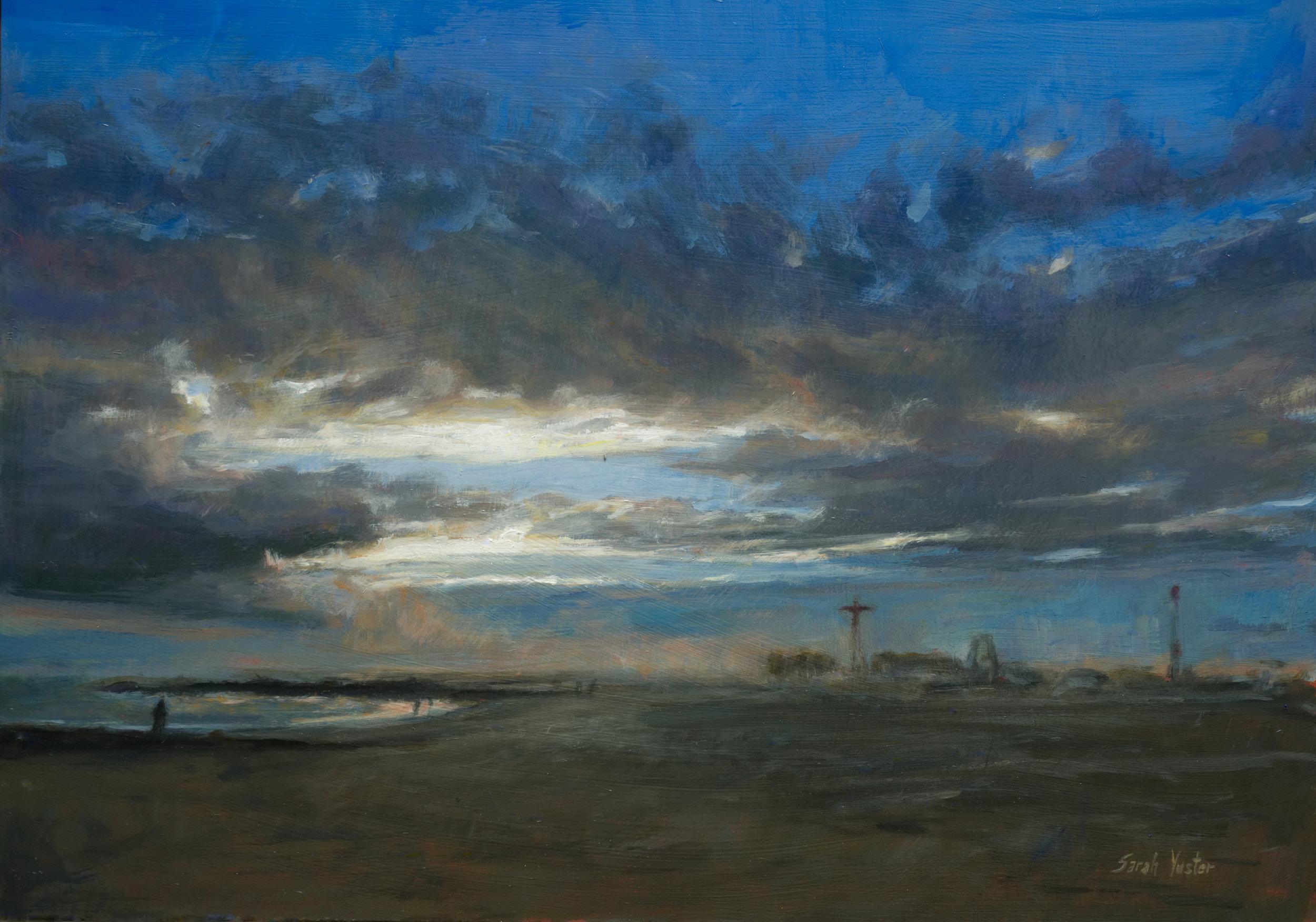 Brighton Beach And Coney Island In Winter