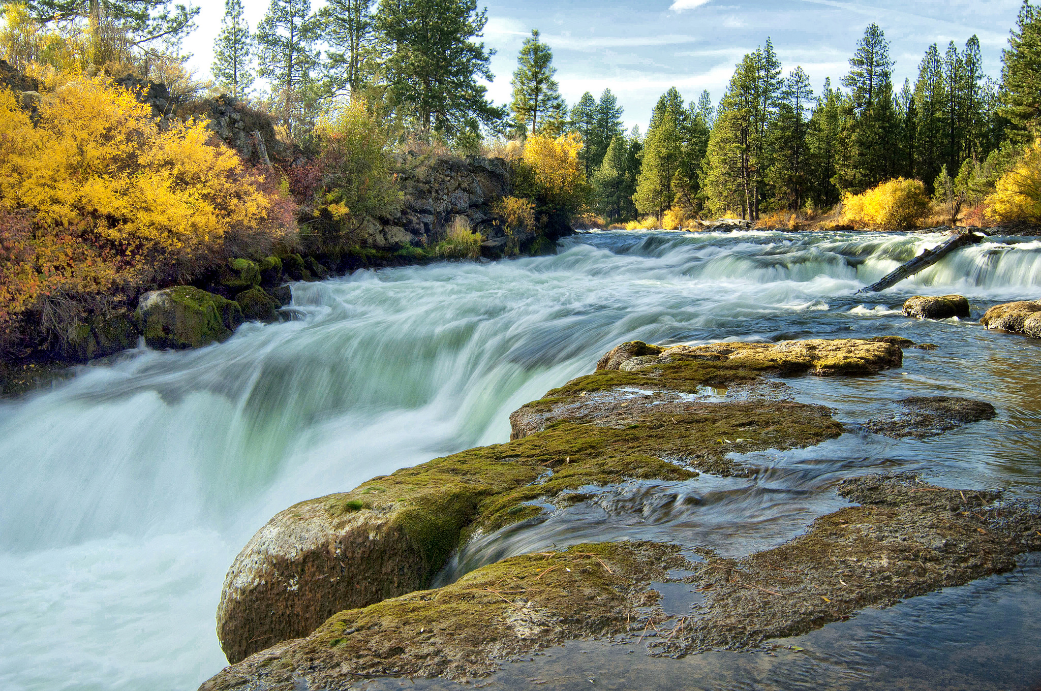 Photo: U.S. Forest service