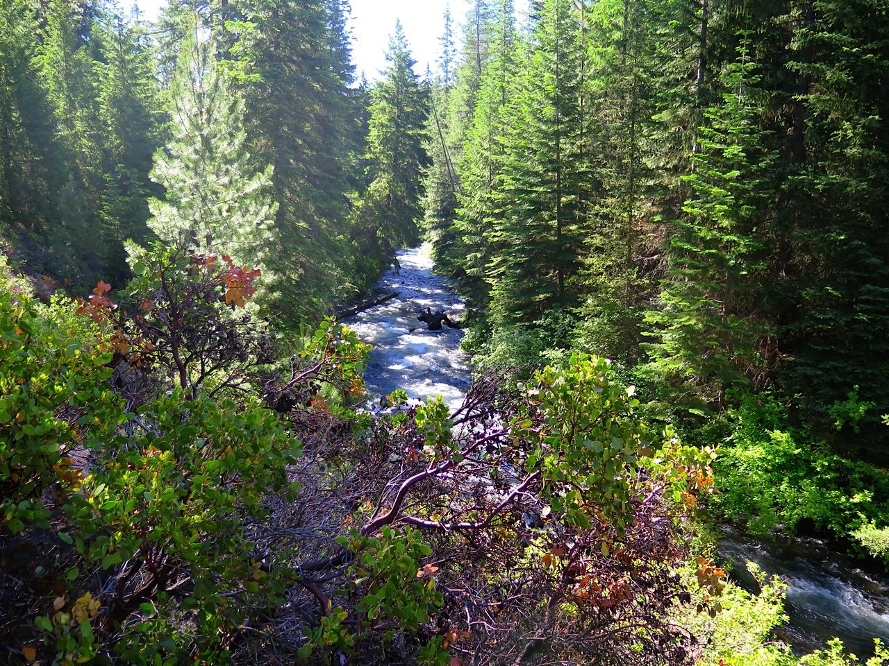 Photo of Tumalo Creek courtesy of Rob Windlix