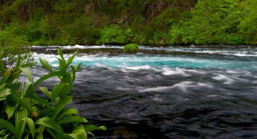 In 2009, LandWatch Fought for Tighter Metolius Protections in the Legislature