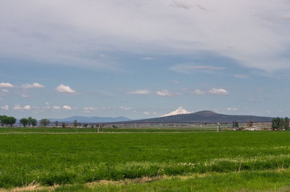 Jefferson County is home to Central Oregon's most efficient and productive commercial agriculture.