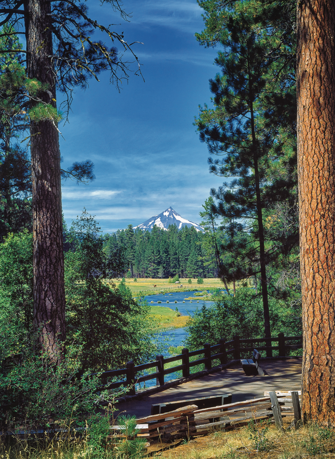 Photo of viewpoint at the Headwater of the Metolius River. By Dennis Frates