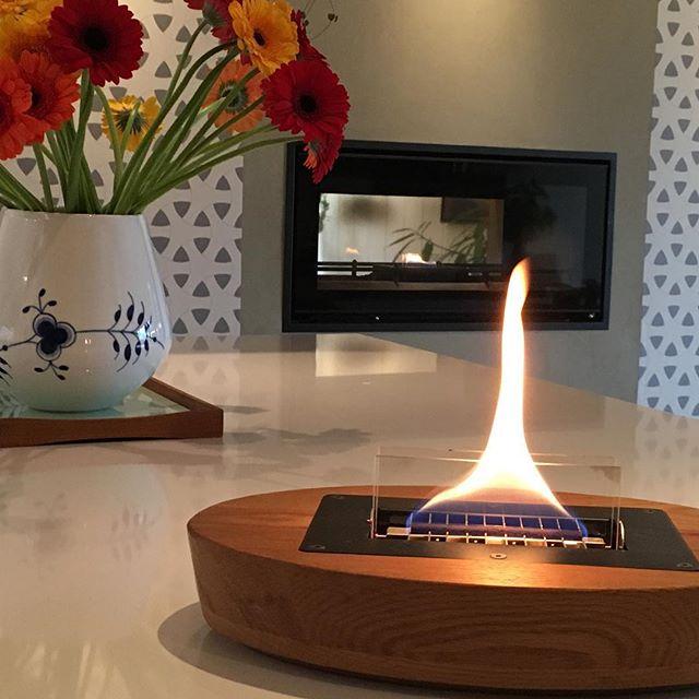Tenderflame, flammen som er klassens snilleste🥳. Det er bare to uker til vår fantastiske vår og sommerkolleksjon er i butikk. Like fine og like trygge - både inne og ute🔥. God helg😎#tenderflame #tenderflame_norge #nosoot #nosmell #safe #cosyflames #bobedreas #summernights #sooninstore #sooninstores #oak #nature