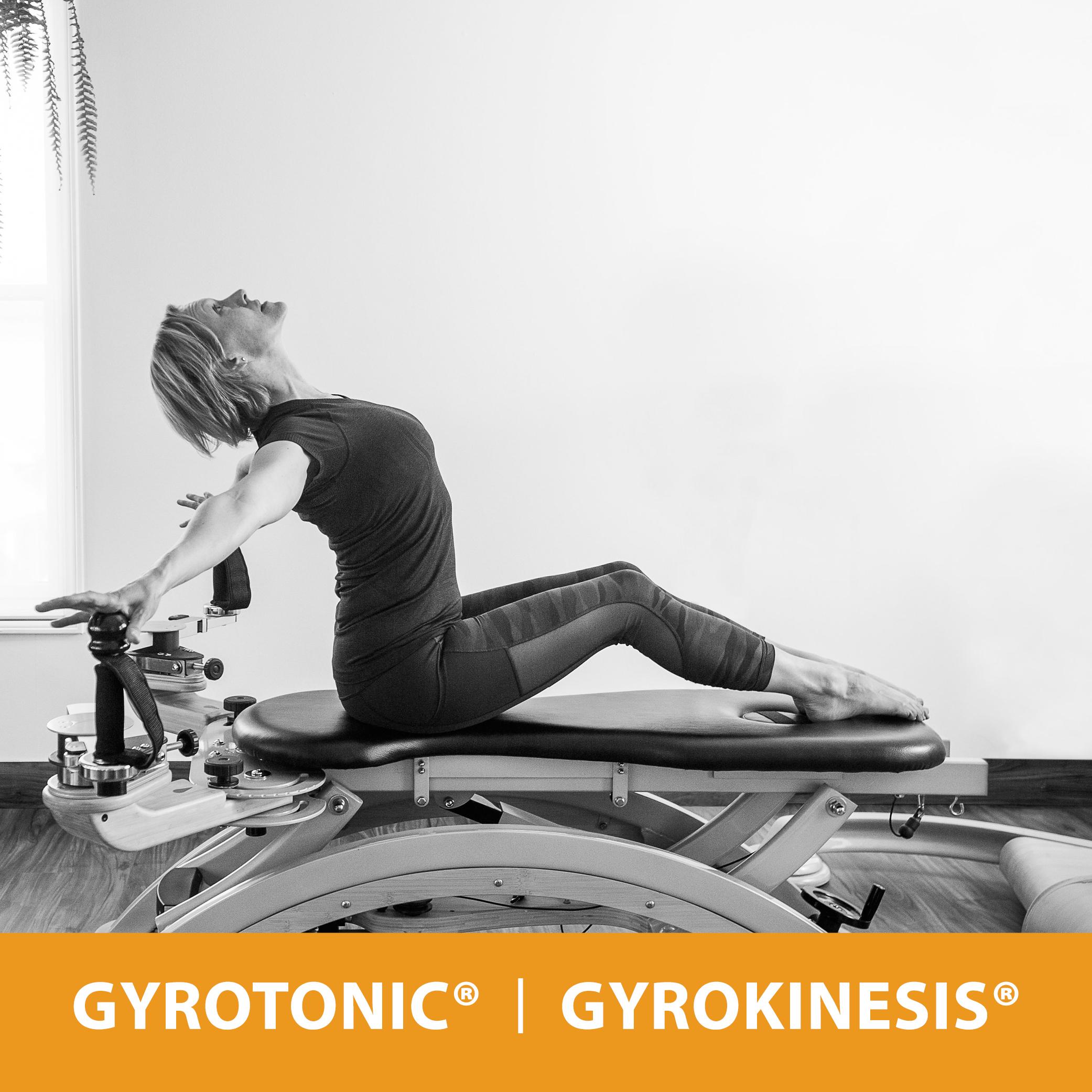 doencreative-mosaicbodyworks-gyrotonic.jpg