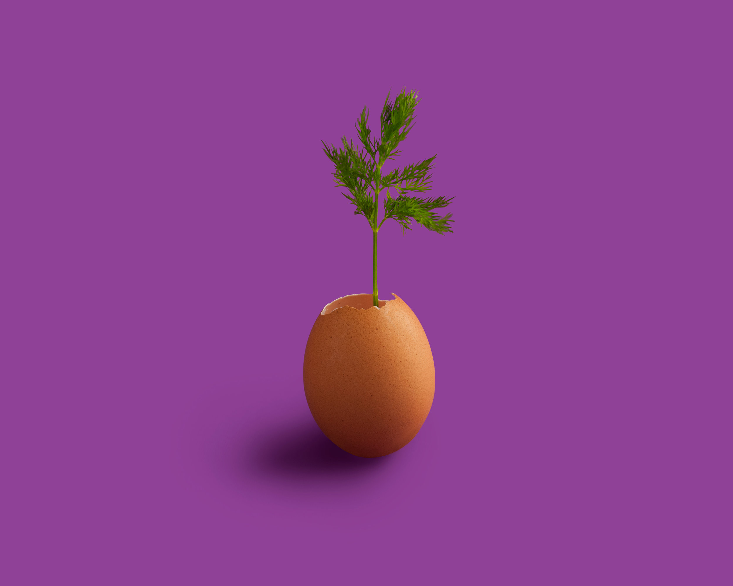 doencreative-ideas-running.jpg