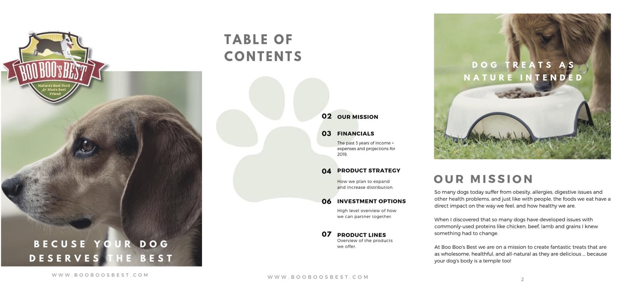 Erin Brennan - Marketing Case Study - Boo Boos Best.jpg