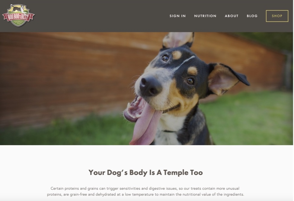 Squarespace+Website+Example+-+brand+case+study+-+boo+boos+best+dog+treats (1).jpg