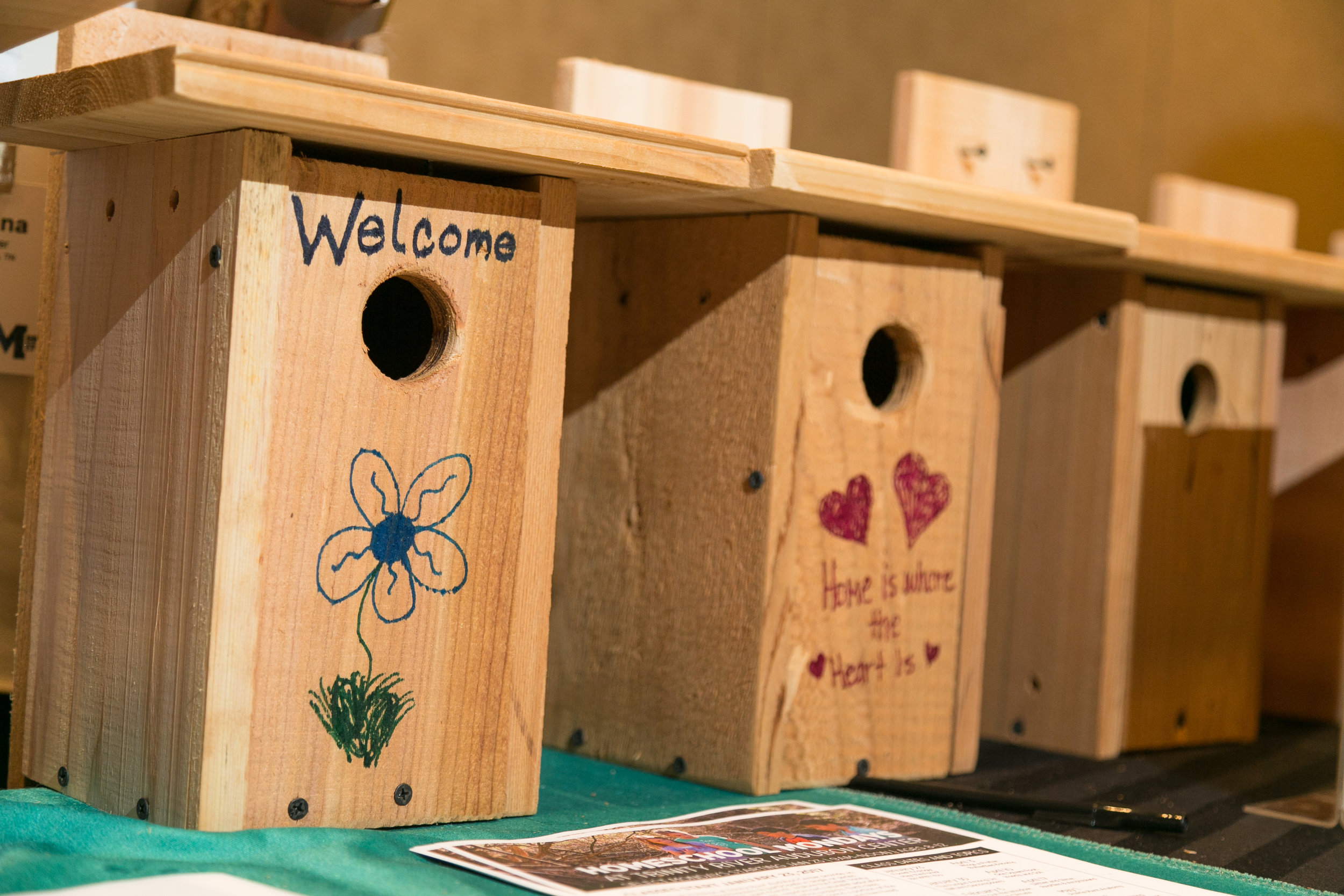 Animals-Finished-Birdhouses-Bsci.jpg