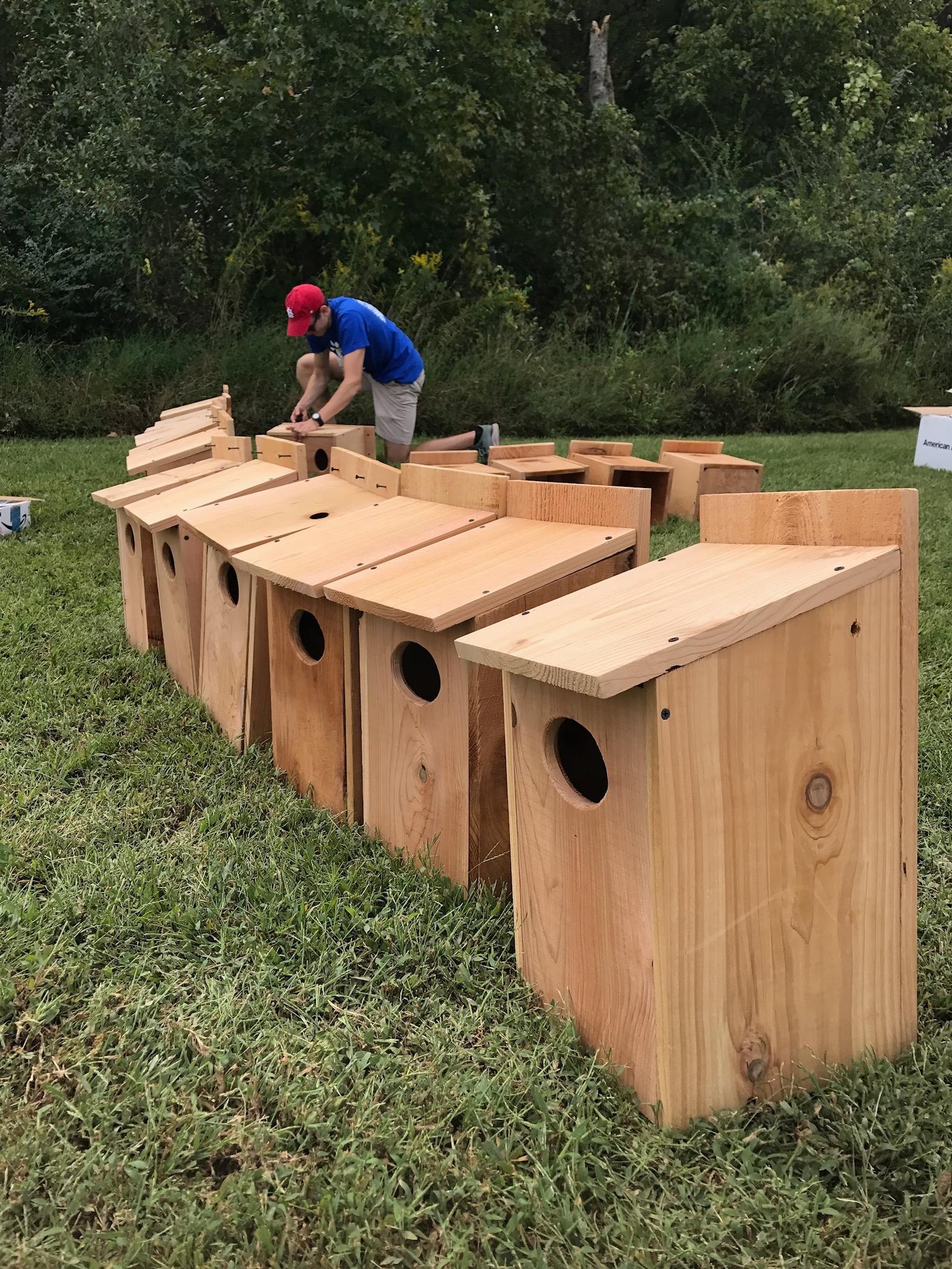 Animals-Finished-Nesting-Boxes-MEMPHO.jpg