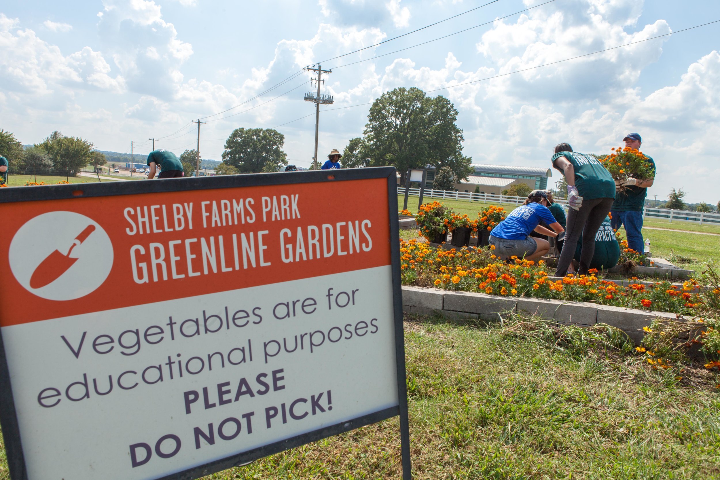 Reactions-Shelby-Farms-Greenline-Gardens-MEMPHO.jpg