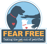 fear-free-veterinarian-austin-texas