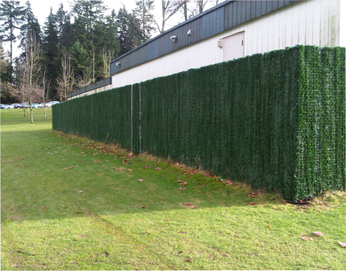 fencing with hedge screen