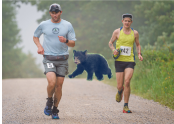 I've gained some distance on the giant bear cub who appears smaller in the distance but is actually quite gigantic. Photo Credit: Keith Knipling