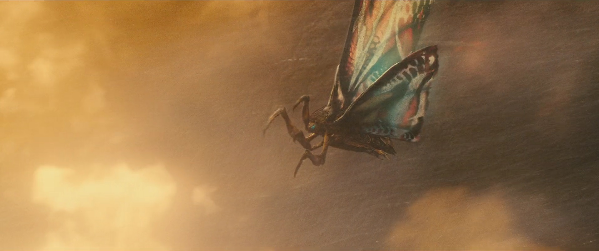 31 Mothra adult.jpg