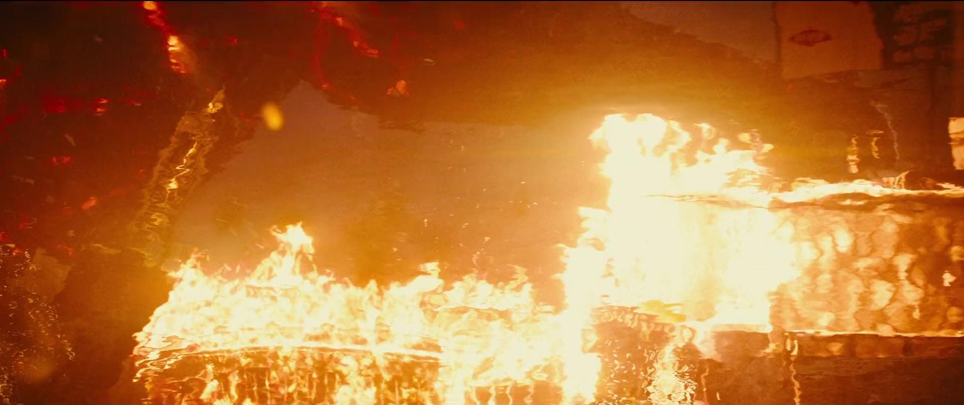 69 Fire Goji 1.jpg