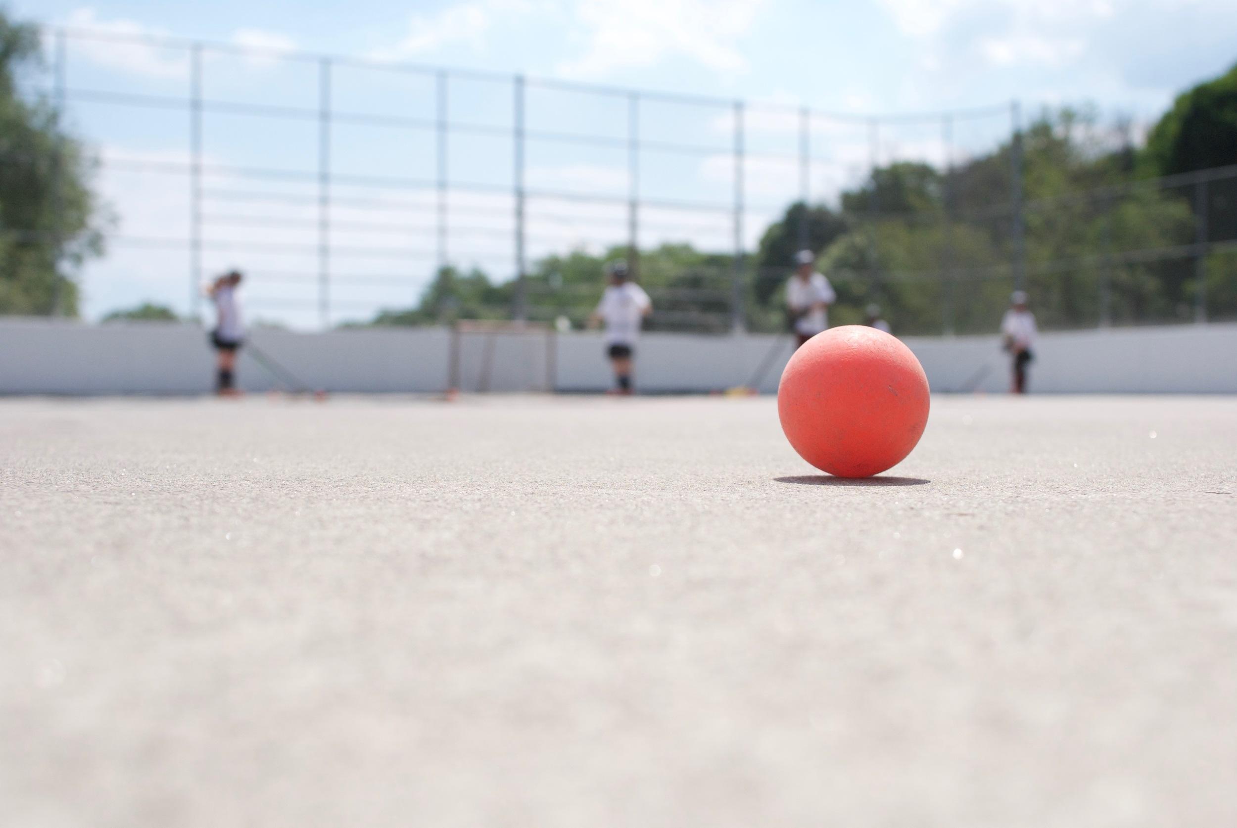 Withrow_Ball_Hockey_Academy_Start.jpg