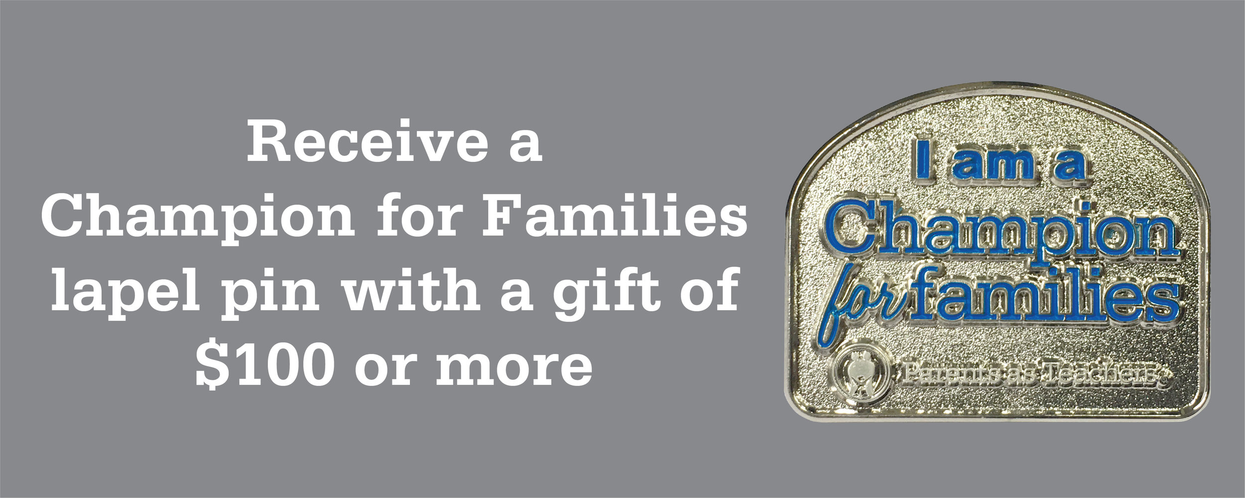 Make a minimum gift of $100 and you will receive a Champion for Families lapel pin.