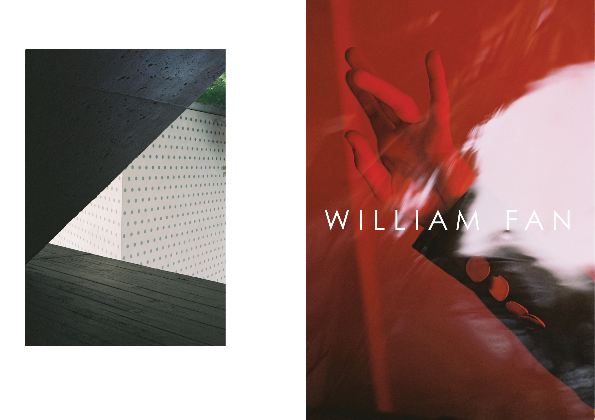 CAMPAIGN SS16 WILLIAM FAN.jpg