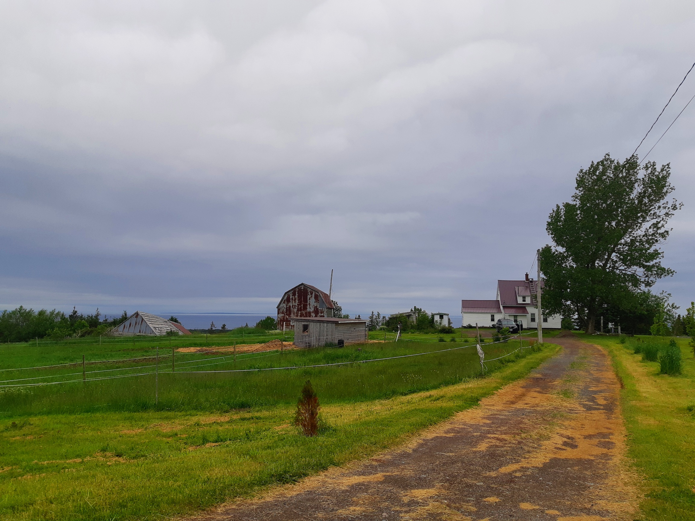 farm+from+road.jpg