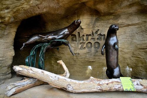 akron_zoo_12.jpg