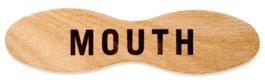 mouthshop_logo.jpg