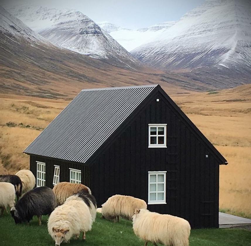 Reclaim Your Self Iceland Yoga Retreat8.JPG