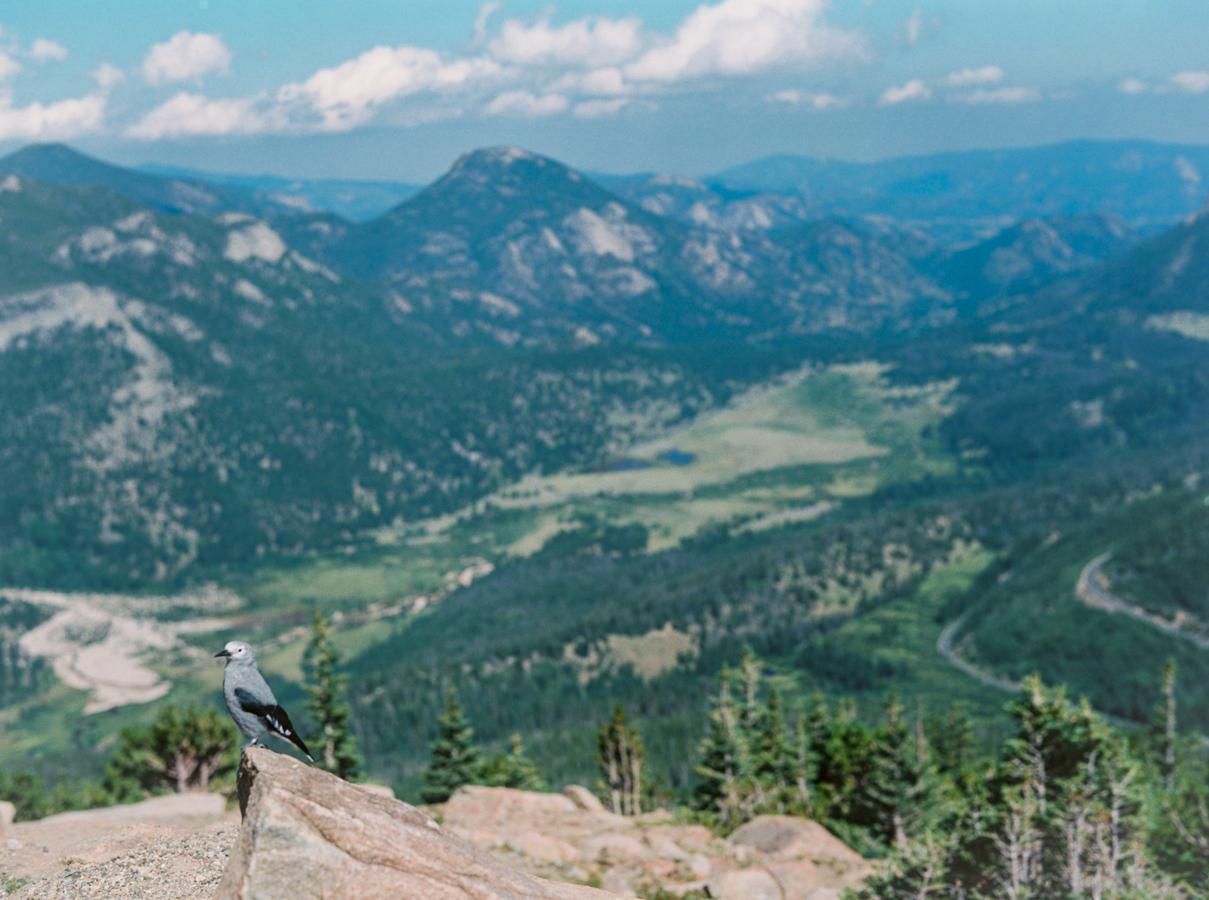 Colorado_JenniferBlairPhotography-1010.jpg