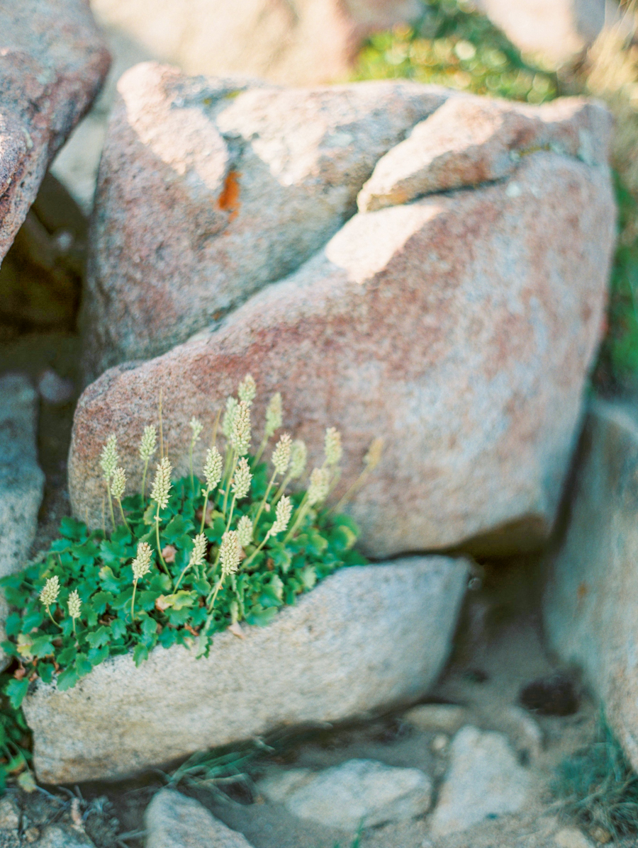 JenniferBlairPhotography_Colorado-11171.jpg
