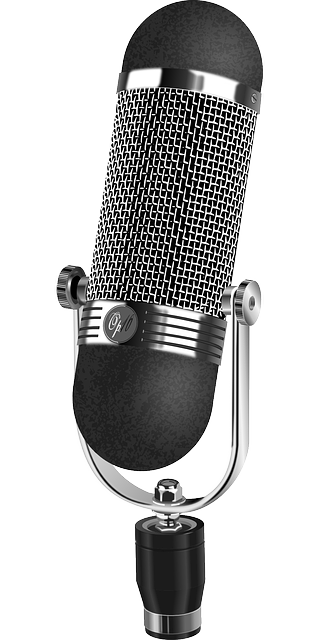 microphone-159768_640.png