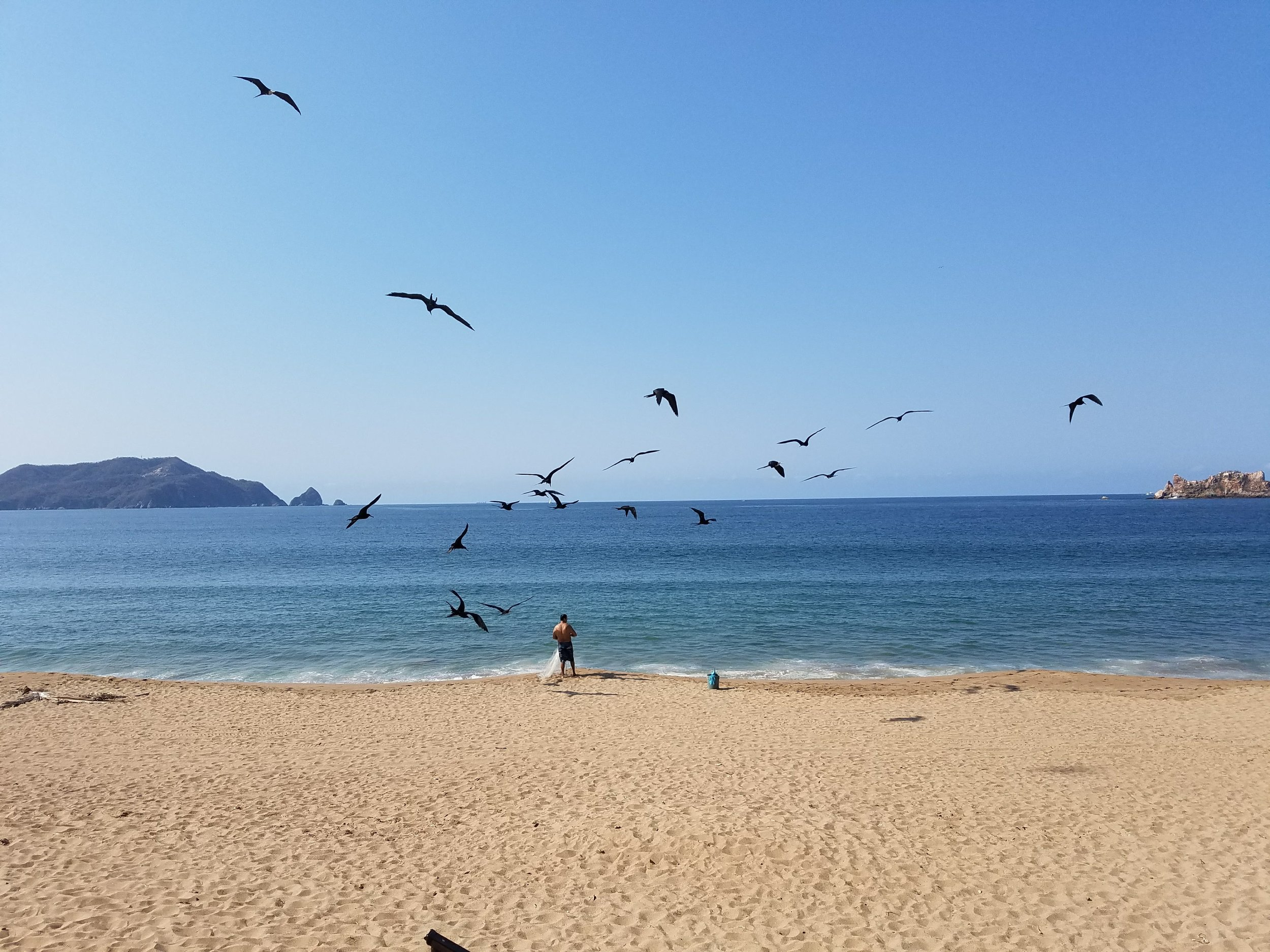 View of the beach from La Paloma. Man feeding his catch to the birds.