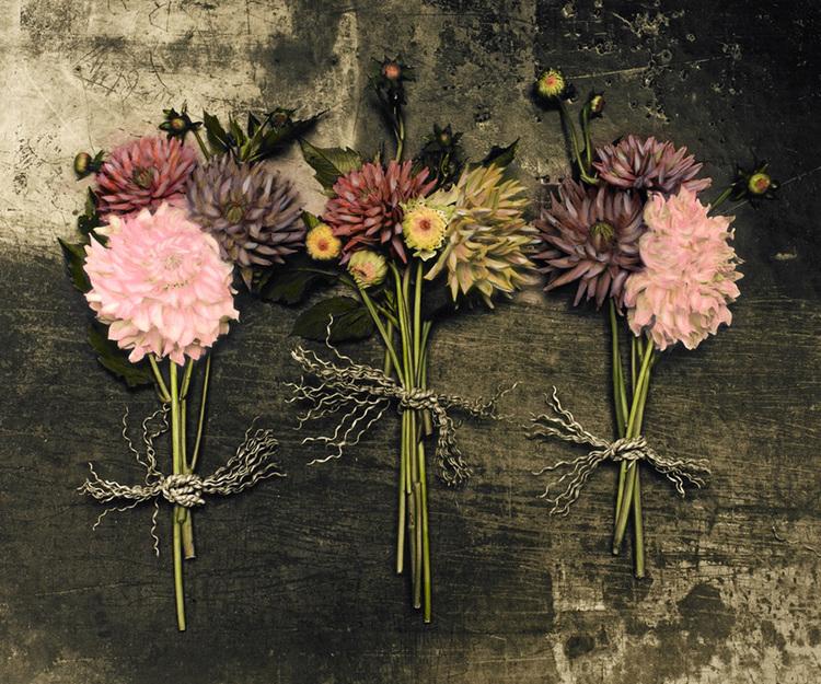 Chrysanthemum+Trio+300dpi.jpg
