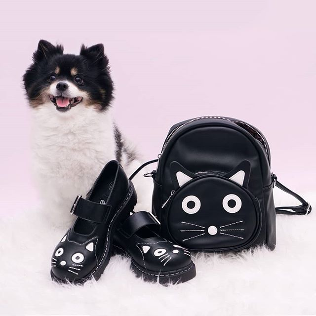 Even though Layla is a dog, she's still down for some #MeowMonday with these @TUK_FOOTWEAR Kitty Face MJs and backpack. Seriously, how freakin' cute are these?! 😻🐈 #TUKSHOES