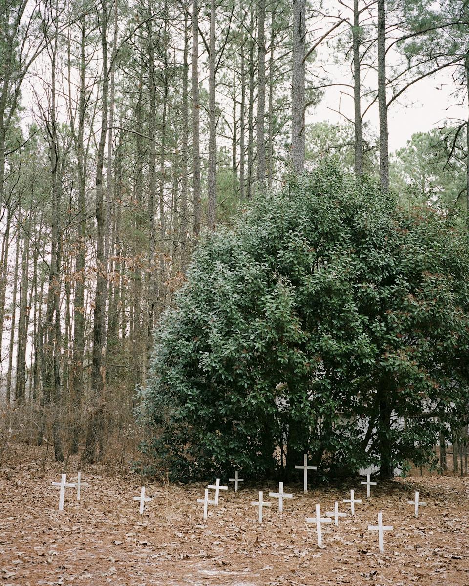 Jenna Miller, Pet Cemetery, 2015