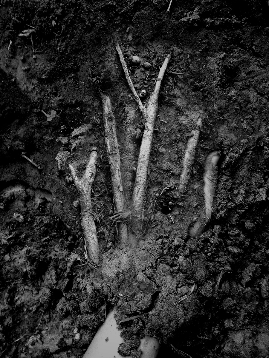 Angela Bacon-Kidwell, Turner's roots', 2012