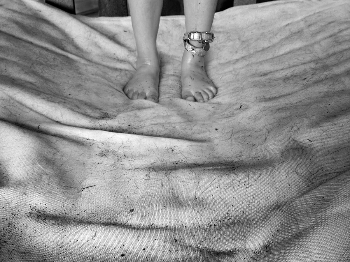 Angela Bacon-Kidwell, Dog bed, 2012