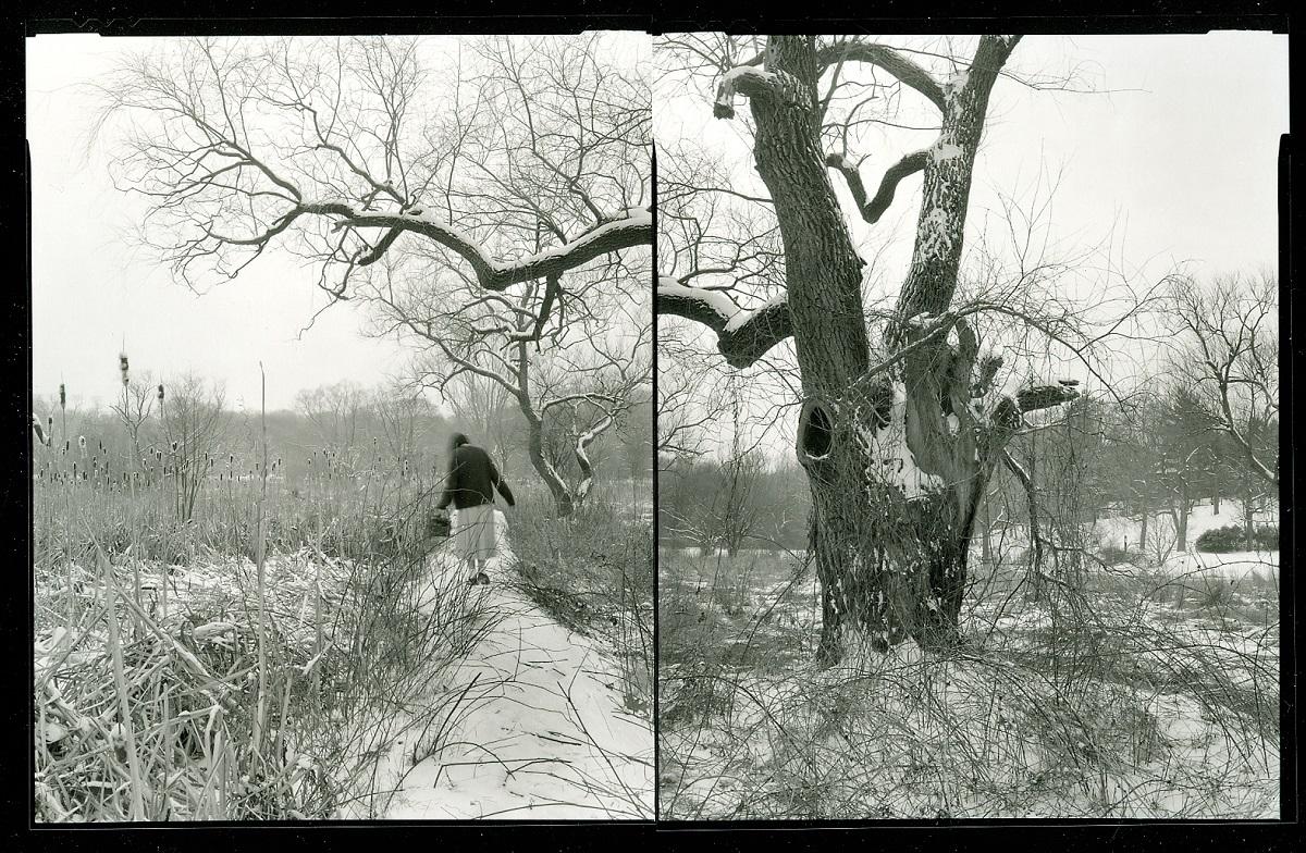 Agnieszka Sosnowska,  First Snow. Self Portrait. Arnold Arboritum, Jamaica Plain. 1991.