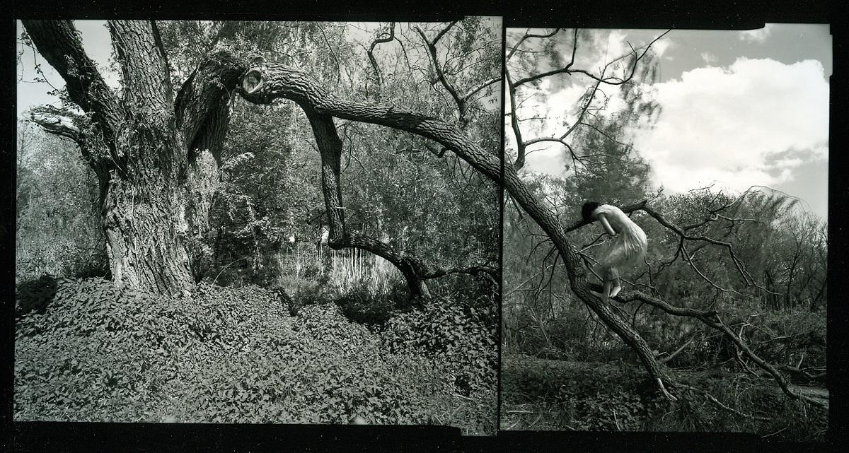 Agnieszka Sosnowska, The Climb. Self Portrait. Arnold Arboritum. 1991.