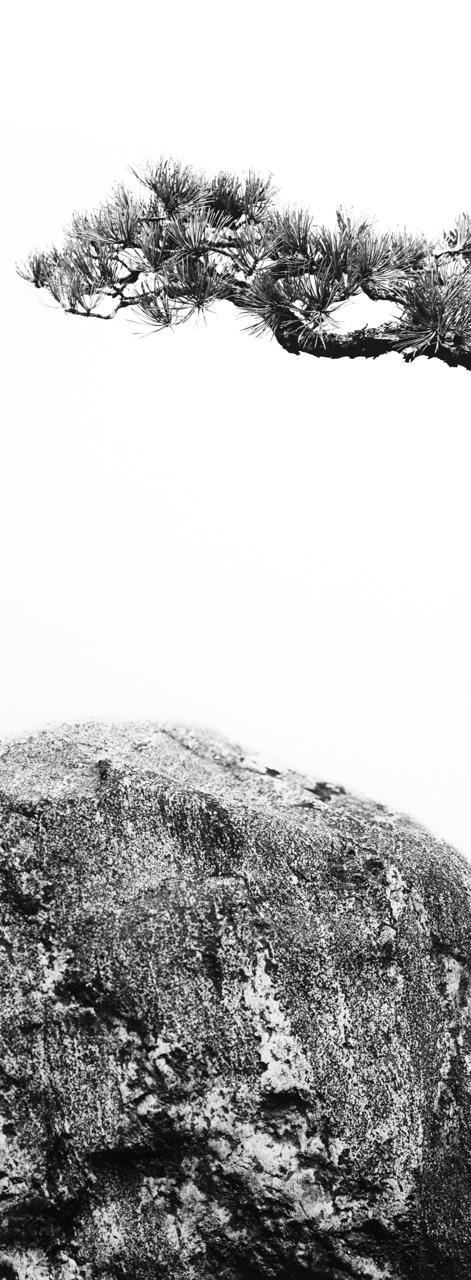Pitch Pine Granite.jpg