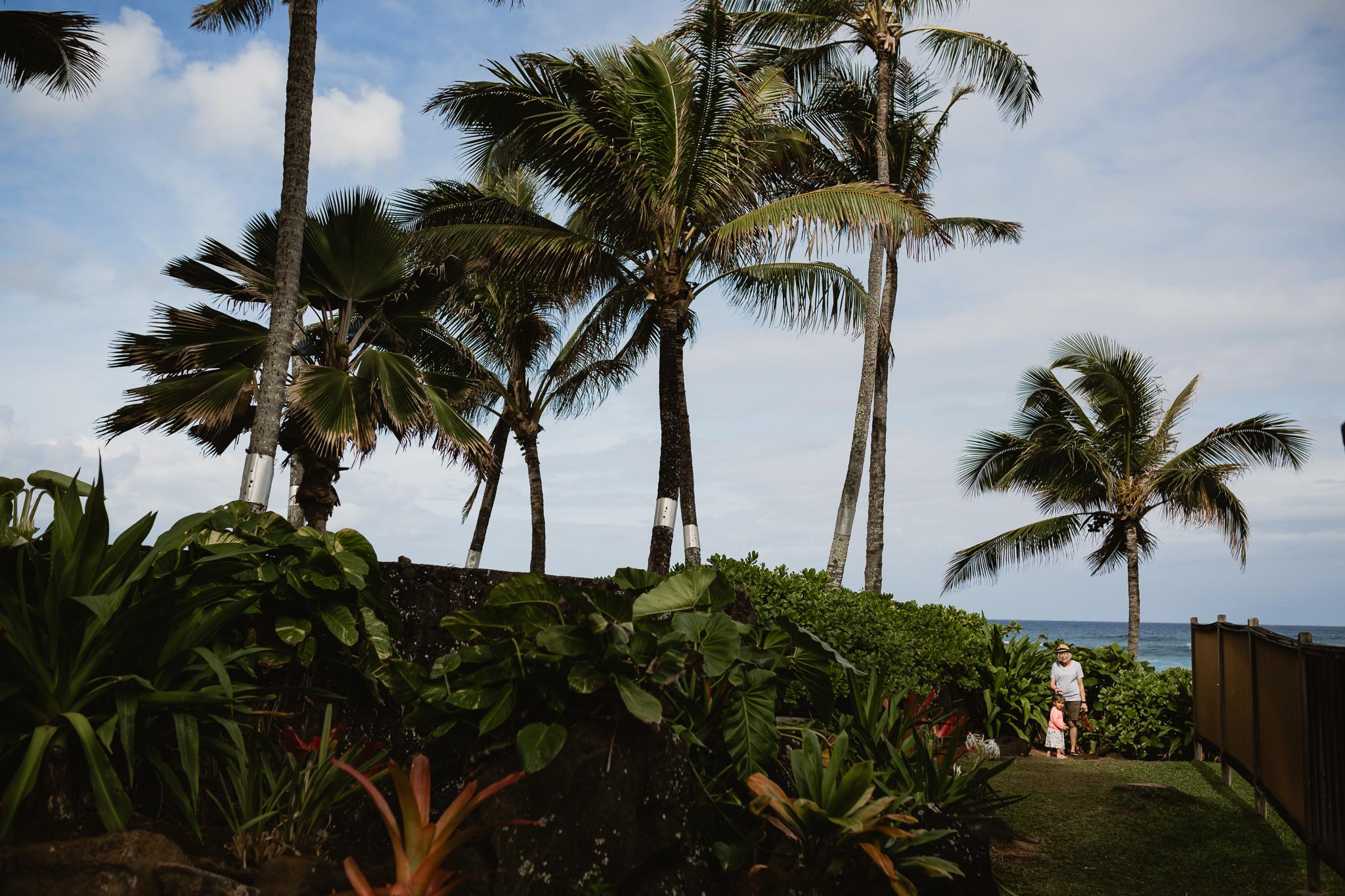 Hawaii(10)-3.jpg