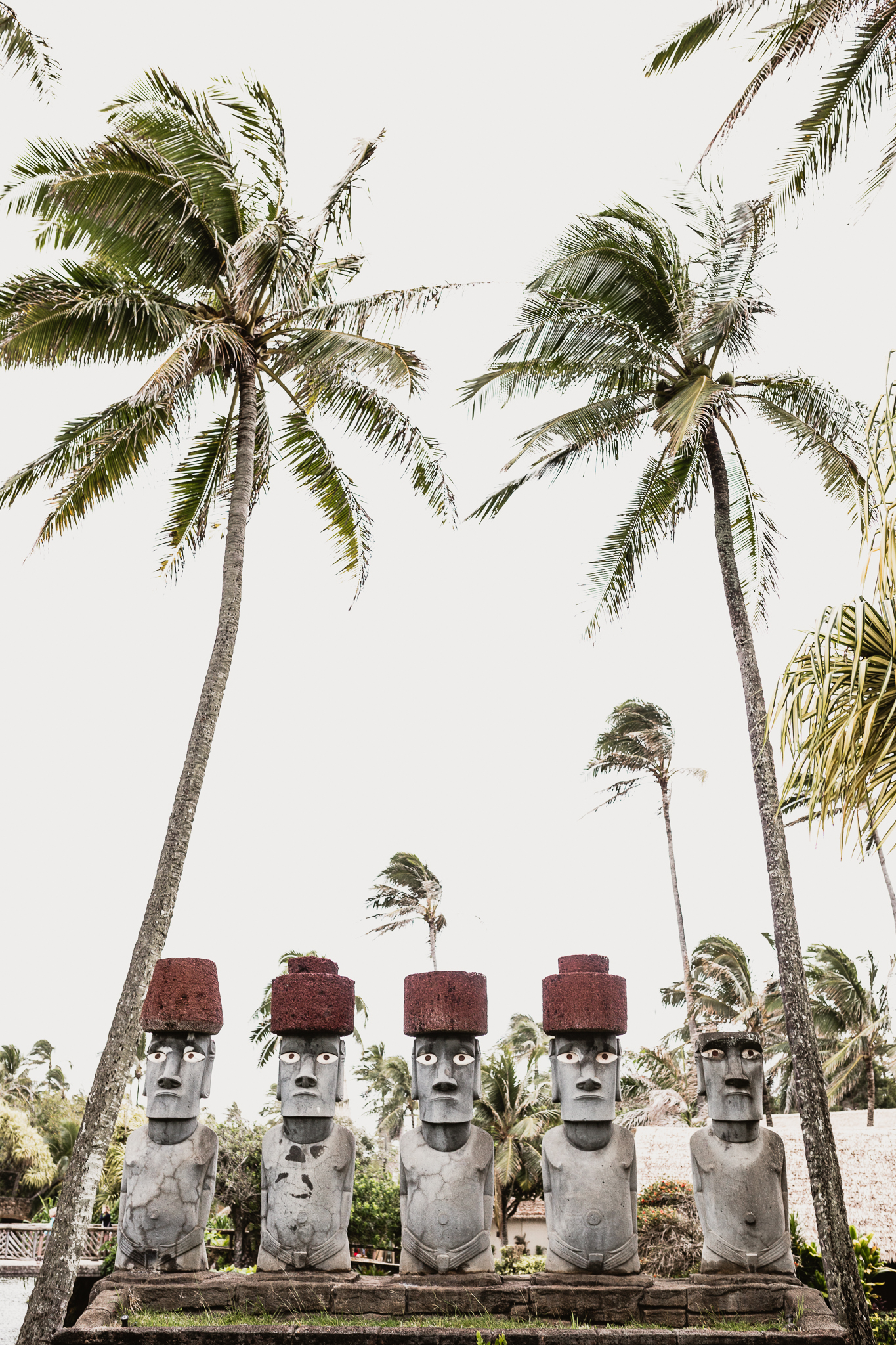 Hawaii(12)-29.jpg