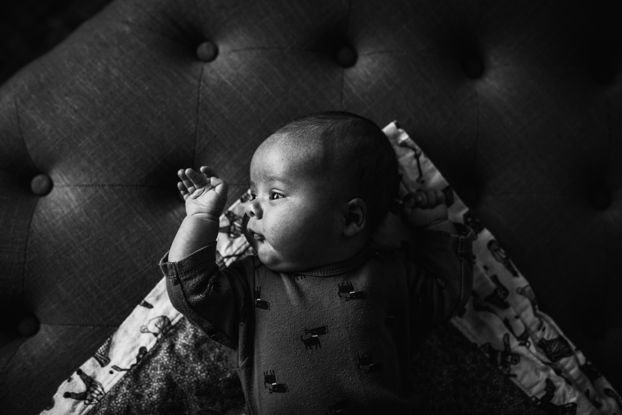 Alina-Joy-Photography-Cold-Lake-Photographer-3-3.jpg