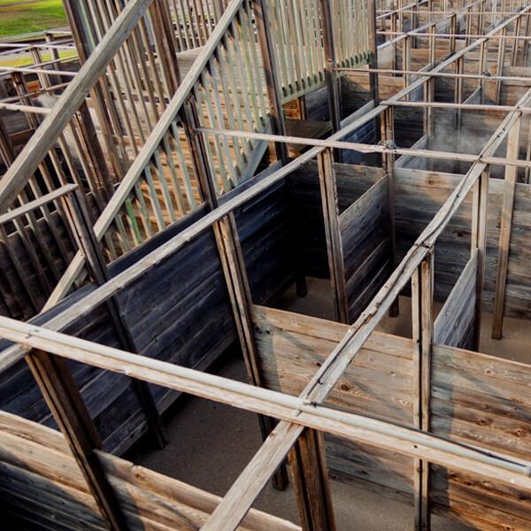 A Maze N Games Wooden Maze.jpg