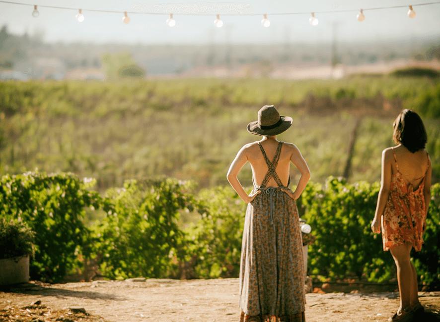 Hens Parties - two women on vineyard.png