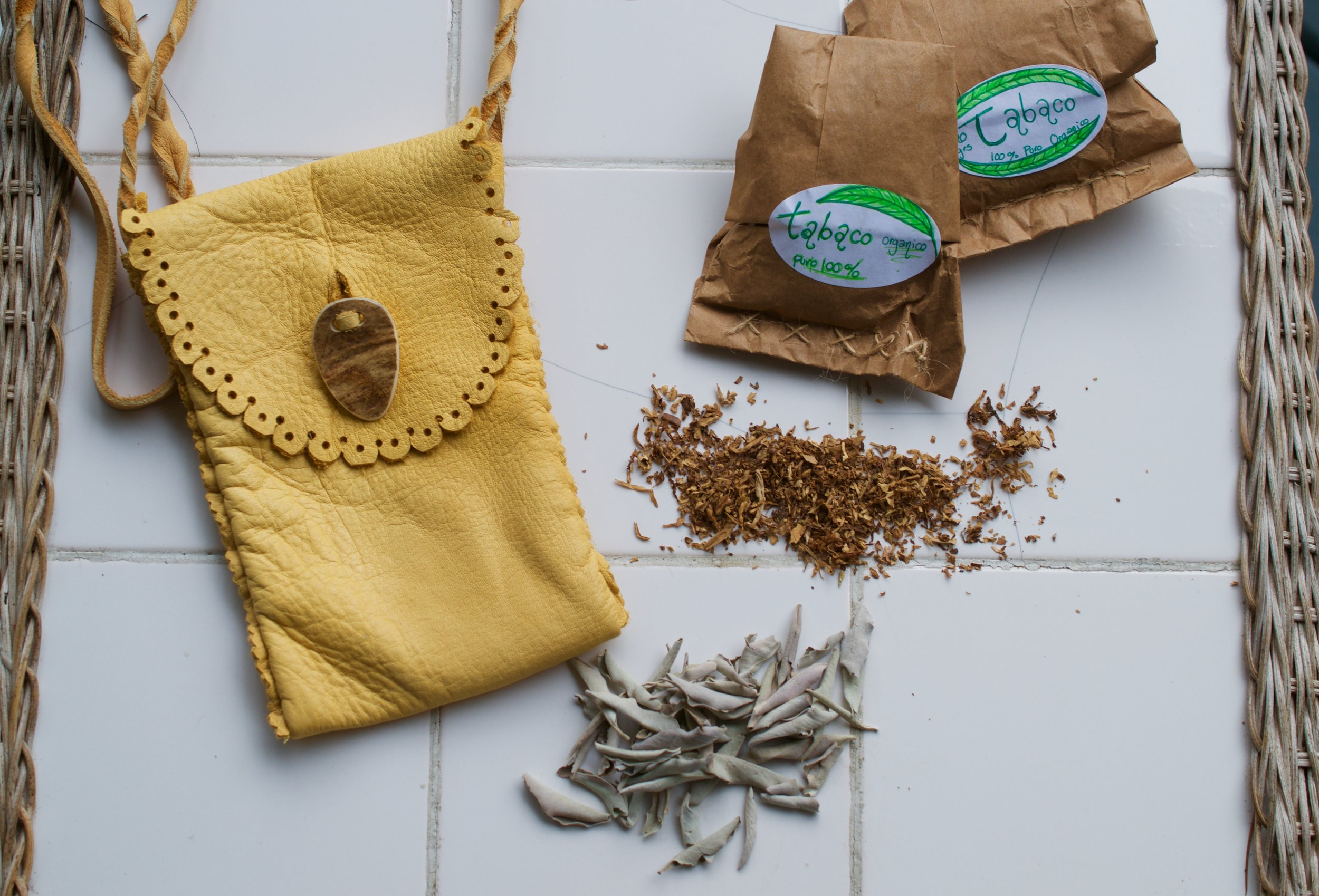 Tobacco and White Sage as offering or smudging before harvesting wild herbs.