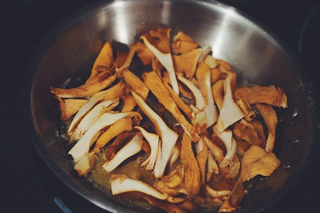Chanterelle season has started here on the island. Frying them up with butter and garlic is my favourite!  #fungi