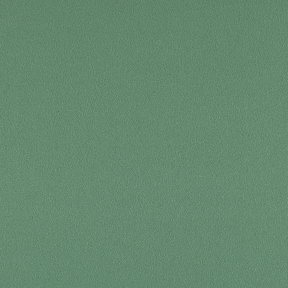 828-67 Succulent