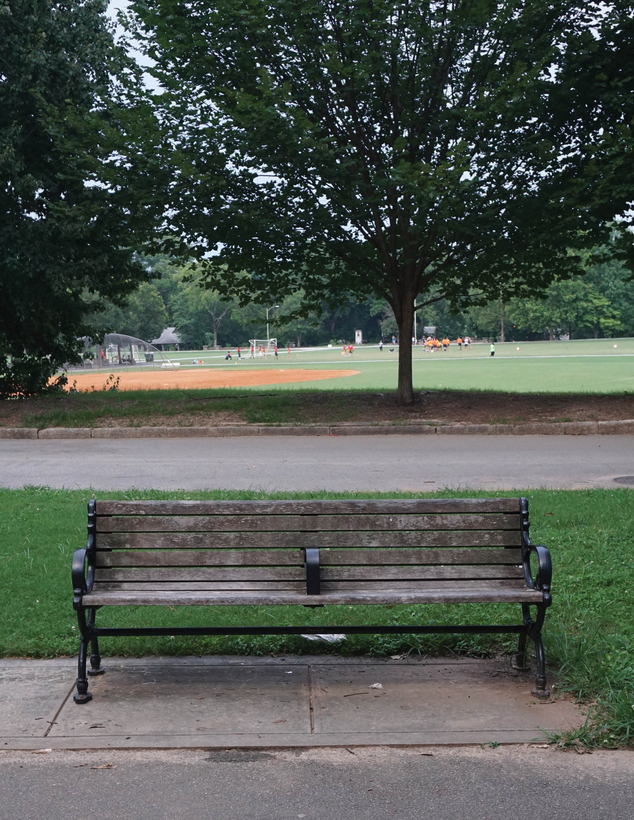 bench for rent.jpg