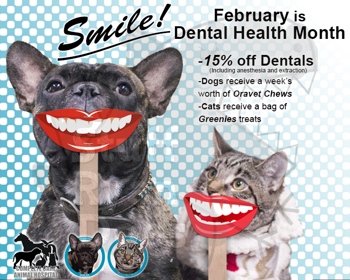 Dental one wm.jpg