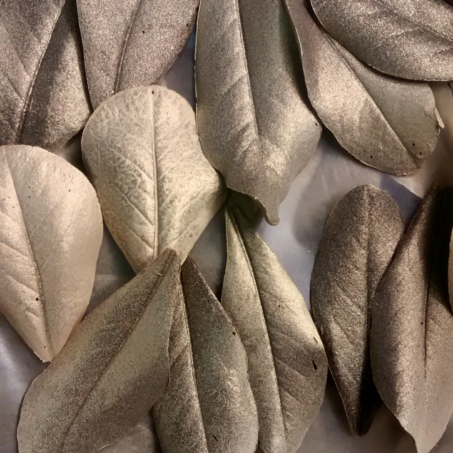 Gilt-chocolate leaves